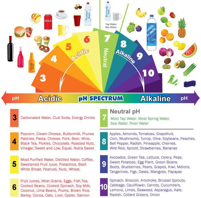 pH Dial of Food