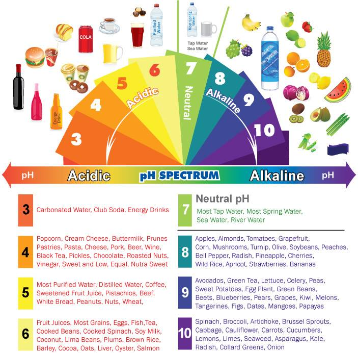 pH Dial of Food